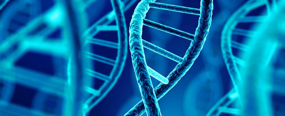 Polymorphism snp genes